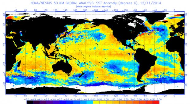 Global Sea Surface Temperature Anomalies