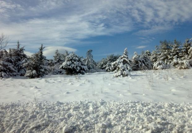 Snow cover photo