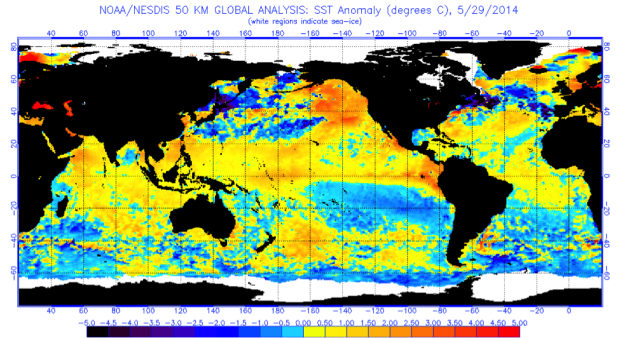 Sea Surface Temperature (SST) anomalies for May 29, 2014.  NOAA/NESDIS.
