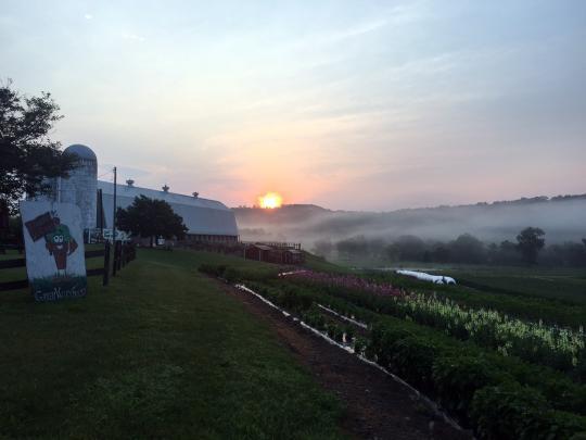 Valley fog photo