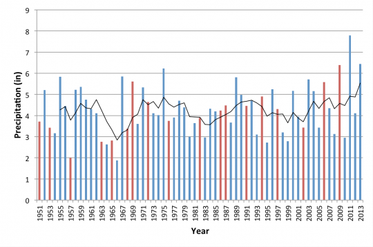 Time series of New Jersey total summer precipitation from 1951-2013.  Red bars indicates years with an El Niño event.  Black line indicates 5-year moving average.
