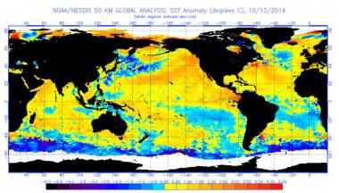 Sea Surface Temperature Anomalies
