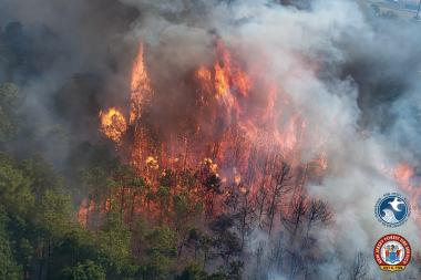 An aerial view of a wildfire in Lakewood on March 14th