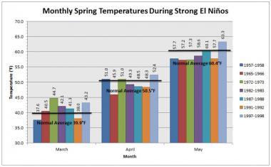 Spring temperature anomalies during past strong El Niños.