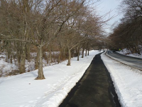 Snow in Echo Lake Park