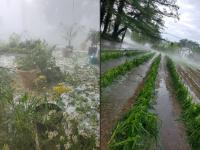 Upper Township hail on July 1st