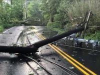 Thunderstorm wind damage in Holmdel