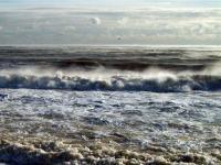 Sea smoke photo