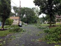Tornado Damage in Berkeley Heights