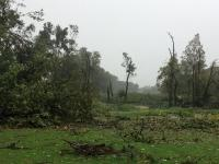 Damage from tornado in Paramus on October 7th. Photo Credit: Michael Harger